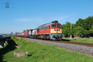 628 311 with container train in Gyorszabadhegy by morpheus880223