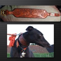 Dog collar by tim23