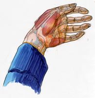 Hand 1 by imperiusunforgivable
