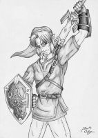Link Pencil Drawing by dsx100