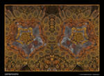 pentamorphic by fraterchaos