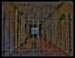 Mesker Tunnel Gate by boron