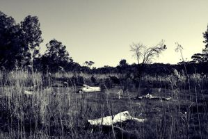 middle of nowhere II by GothicXpress