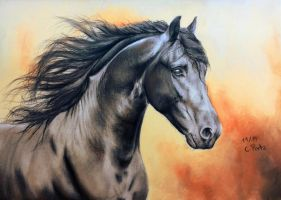 Friesian Horse IV by ManiaAdun