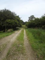 Country Road by YesIamEccentric