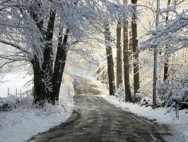 Winters Back Roads by sugartwins