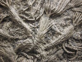 GigerFossil by reeks