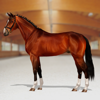 .:Hello Champion:. by RvS-RiverineStables