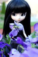 Pullip Doll and Pansies by KerriaRosette