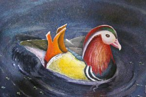PAINTING DUCK by CatherineDS