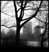Central Park I by Lucky13Grl