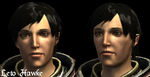 Dragon Age Character Concept: Leto Hawke by ParisWriter