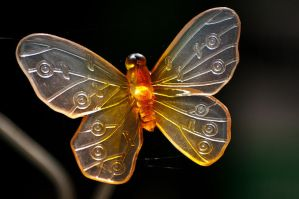 Butterfly Lights by taffmeister