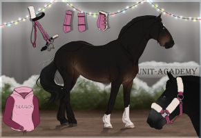 Traaker Import |Christmas GIFT 112 by BRls-love-is-MY-Live