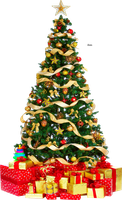 Xmas tree png 3 HQ large by iamszissz