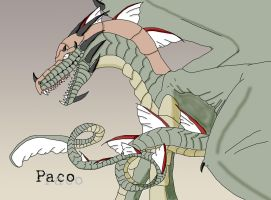 Paco by LeonLover