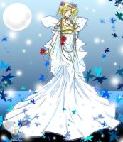 Sailor Moon Princess Serenity by bio1