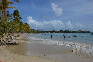 Beach of Salines and Anse des Salines by A1Z2E3R