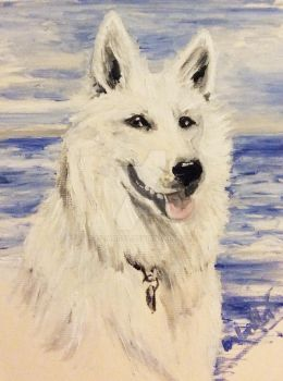 White Shepherd by 1stAngel