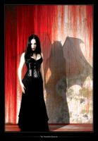 :: The Vampires Shadow :: by VermilionTears