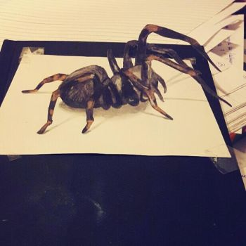 3d spider by Yakise