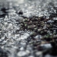 Ground Level by P3MBY
