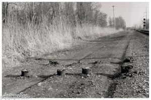 Track Wood by CasePhoto