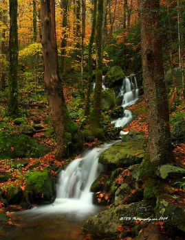 GSMNP Autumn 6 by TRBPhotographyLLC