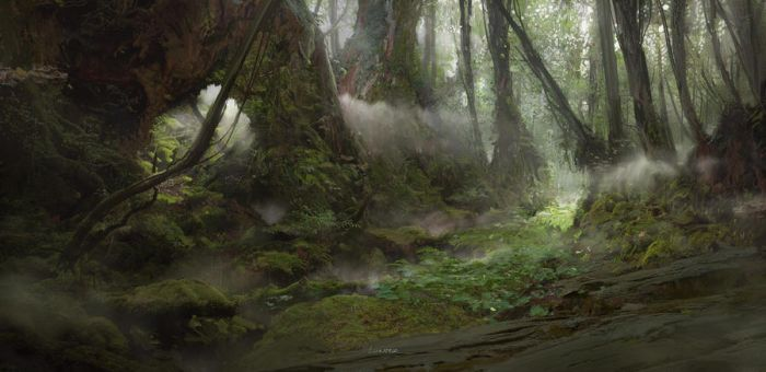 Forest2014 by TitusLunter