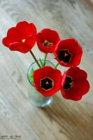 Red tulips 112_366 by eugene-dune