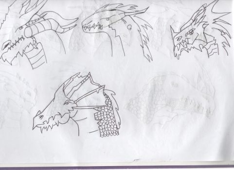 Dragon heads 1 by DragonLoverForever23