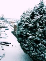 ---Snow by iStillLoveYou