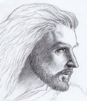Thorin Oakenshield by devsash