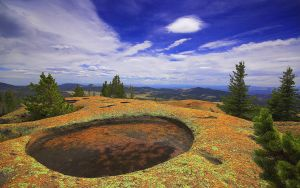 Pine Craters by greenunderground