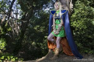 Deedlit_Record of Lodoss War by AMPLE-COSPLAY
