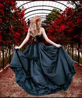 Walk throuh Roses by AnOtherSunrise