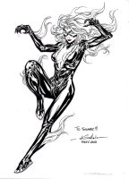 Black Cat - F.A.C.T.S.2013 by SpiderGuile
