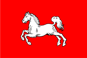 Flag of Hanover by lamnay