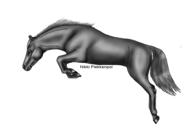 Jumping horse Greyscale by Cappyandme