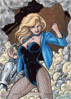 DC: Women of Legend - Black Canary by tonyperna