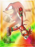 Knuckles - Capoeira by Jin-Tonix