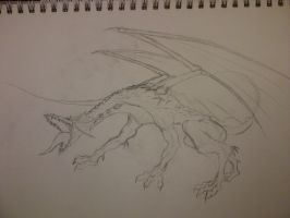 Dragon Attack - WIP by ckatt01
