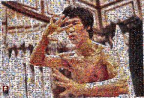 Enter the Dragon Photomosaic by DolfD