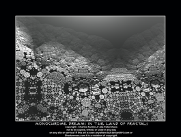 monochrome dreams in the land of fractals by fraterchaos