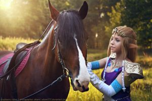 The Legend of Zelda: Twilight Princess - 3 by aKami777