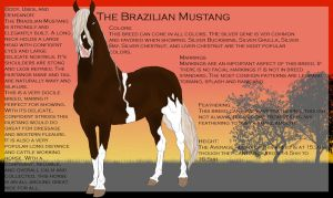 The Brazilian Mustang-Breed Sheet by Secret-Z