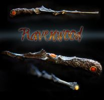 Ravenwood by Eclectixx