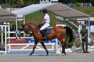 Show Jumping Stock 009 by Champi-Stock