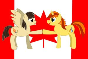 Canadian Ponies by eillahwolf