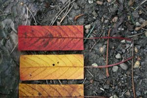 Geometric Autumn X by myp55